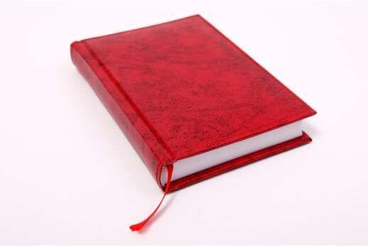 Ежедневник датированный с логотипом